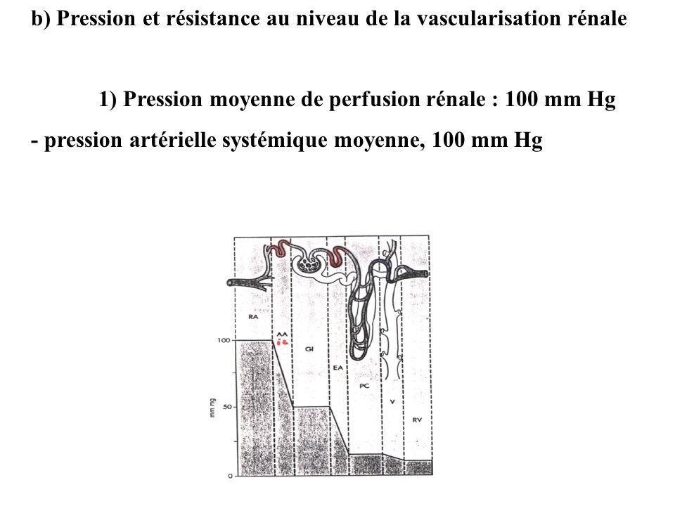 b) Pression et résistance au niveau de la vascularisation rénale 1) Pression moyenne de perfusion rénale : 100 mm Hg - pression artérielle systémique moyenne, 100 mm Hg