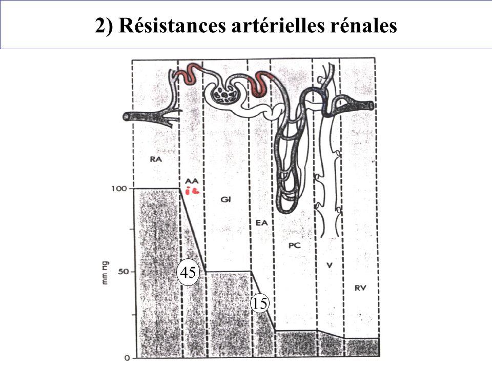 45 15 2) Résistances artérielles rénales