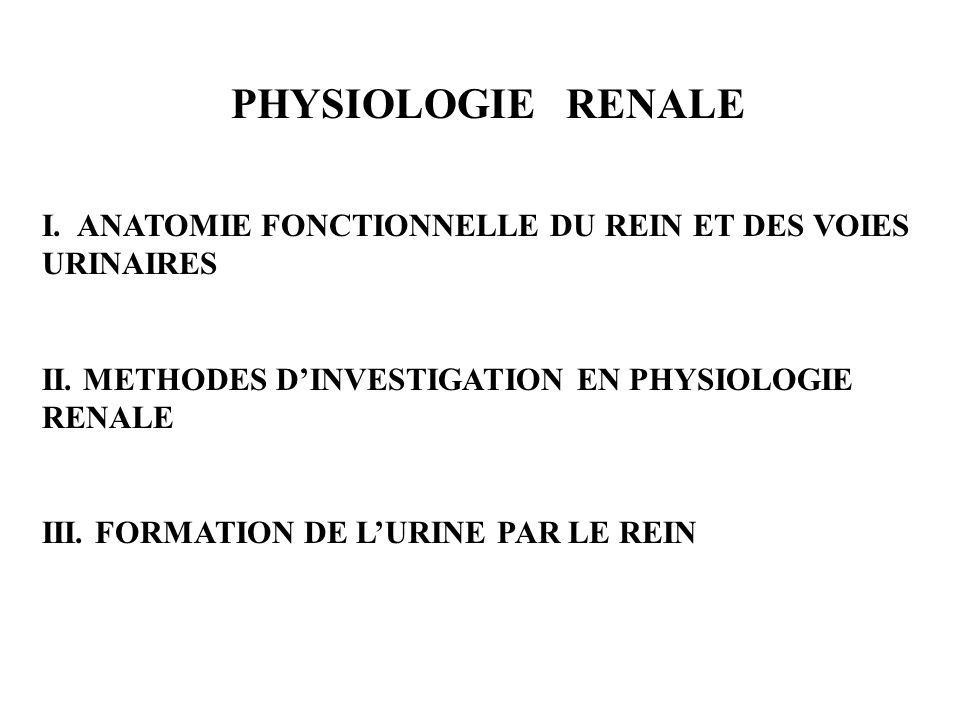 PHYSIOLOGIE RENALE I. ANATOMIE FONCTIONNELLE DU REIN ET DES VOIES URINAIRES II. METHODES DINVESTIGATION EN PHYSIOLOGIE RENALE III. FORMATION DE LURINE