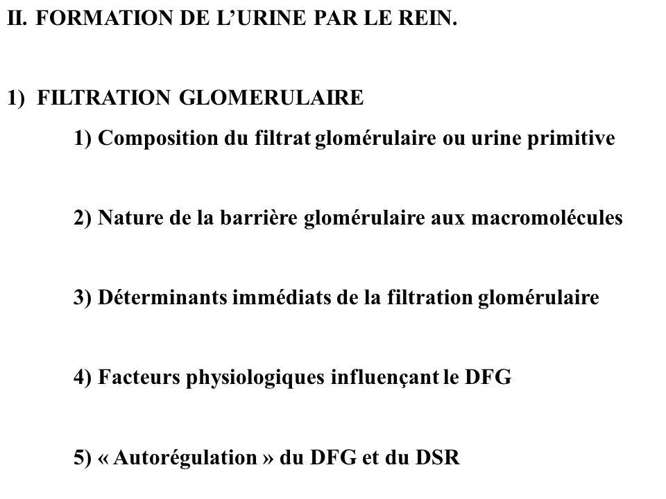 II. FORMATION DE LURINE PAR LE REIN. 1) FILTRATION GLOMERULAIRE 1) Composition du filtrat glomérulaire ou urine primitive 2) Nature de la barrière glo