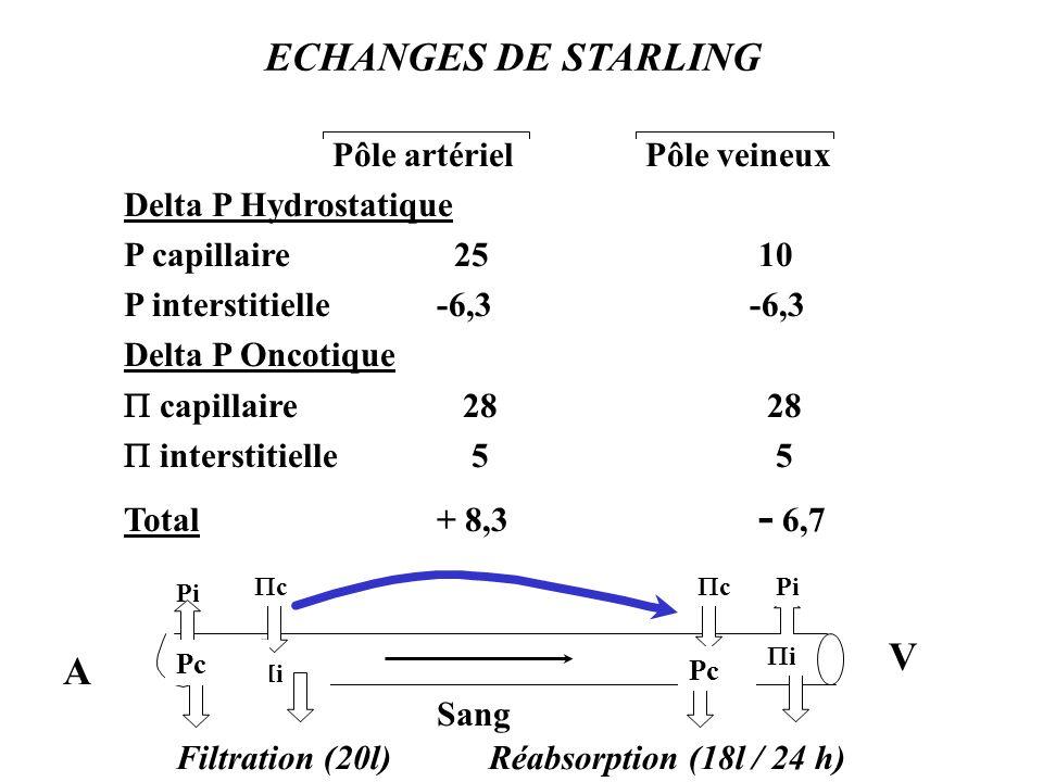 ECHANGES DE STARLING Pôle artérielPôle veineux Delta P Hydrostatique P capillaire 25 10 P interstitielle-6,3-6,3 Delta P Oncotique capillaire 28 28 interstitielle 5 5 Total+ 8,3 - 6,7 V Pi i c c Pc i A Filtration (20l)Réabsorption (18l / 24 h) Sang