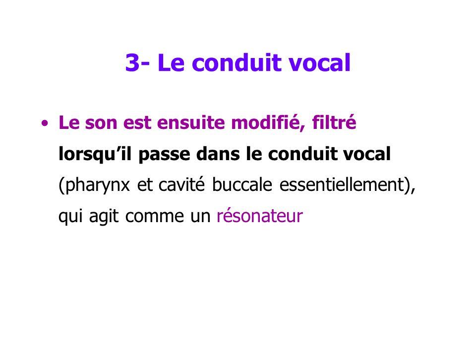 2- le larynx La production du son Les sons articulés (5) : Le registre de la voix humaine sétend de 40 à plus de 2000 Hz –une voix de basse sétend de