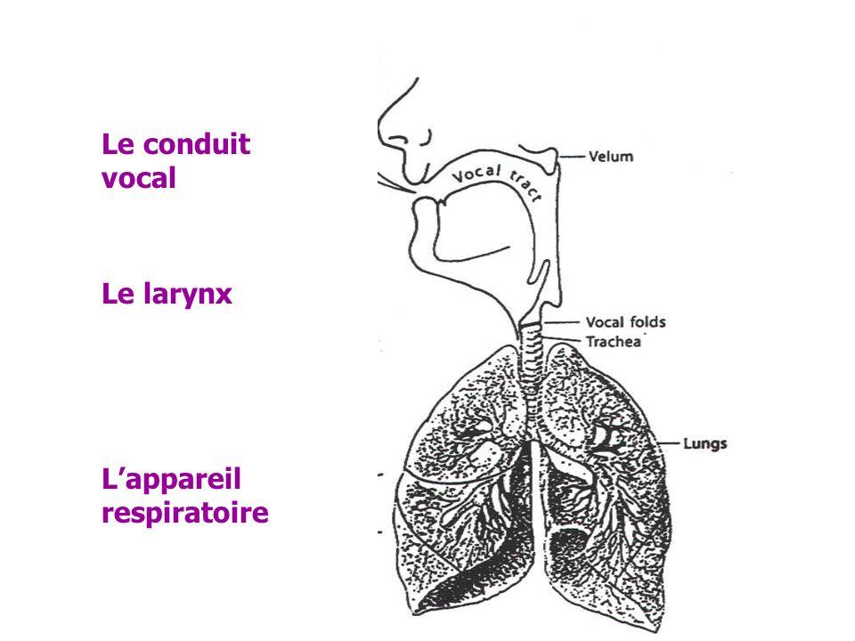 Principe = instrument à vent Trois systèmes interviennent : Lappareil respiratoire qui fournit le flux aérien le larynx qui produit le son le conduit