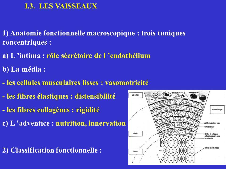 a) lintima; lendothélium 1) Caractéristiques de l endothélium * barrière vivante entre le sang et les tissus * totalité de la face interne du système CV * monocouche cellulaire aplatie dans le sens du courant * organe émetteur / récepteur: - 1500 m2 (90% microcirculation) - 2 Kg 2) Types d informations reçues par les récepteurs * hormonales * mécaniques (forces de cisaillement) * chimiques (activation des plaquettes et des leucocytes) 3) Lieu de contrôle * hémostase * angiogenèse * réponse inflammatoire * tonus vasculaire
