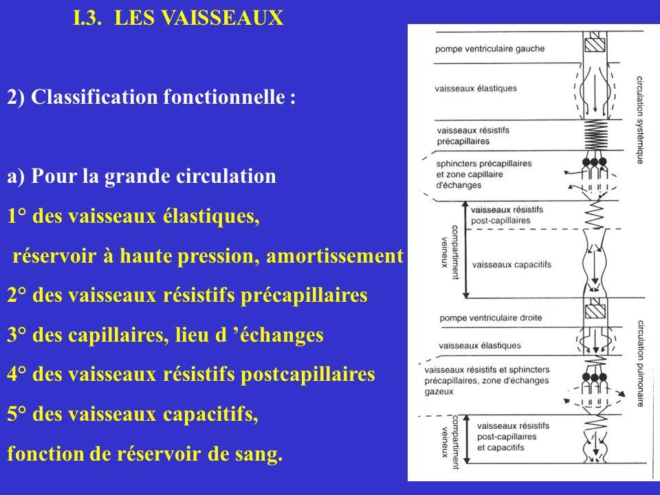 Capillaire sanguin Interstitium Cellules Capillaire Lymphatique ARTERIOLE VEINULE Pressions mmHg P UF = ( Pc - Pi ) - ( c - i ) VAISSEAU LYMPHATIQUE Pc c Pi i