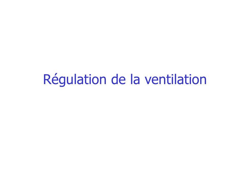 Modulation de la ventilation les récepteurs et boucles réflexes Les chémorécepteurs centraux près de la face ventrale du bulbe, entourés par le liquide extracellulaire cérébral répondent aux variations de sa concentration en ion H + Le CO 2 diffuse à partir des vaisseaux cérébraux puis libère les ions H + ventilation