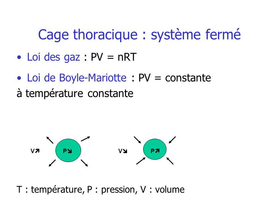 Cage thoracique : système fermé Loi des gaz : PV = nRT Loi de Boyle-Mariotte : PV = constante à température constante T : température, P : pression, V