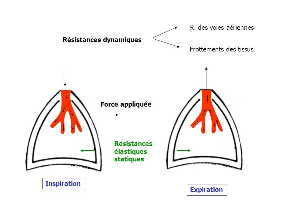 Expiration Résistances élastiques statiques Résistances dynamiques Force appliquée Inspiration R. des voies aériennes Frottements des tissus