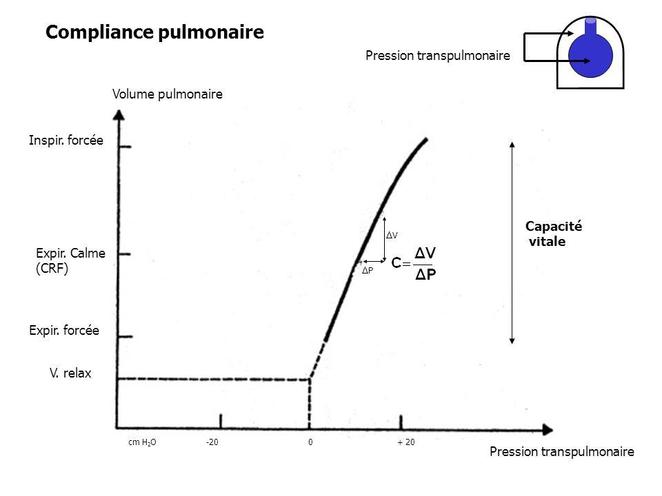 Capacité vitale V P Volume pulmonaire Inspir. forcée Expir. Calme (CRF) Expir. forcée V. relax cm H 2 O-200+ 20 Pression transpulmonaire Compliance pu