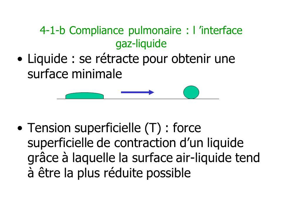 4-1-b Compliance pulmonaire : l interface gaz-liquide Liquide : se rétracte pour obtenir une surface minimale Tension superficielle (T) : force superf