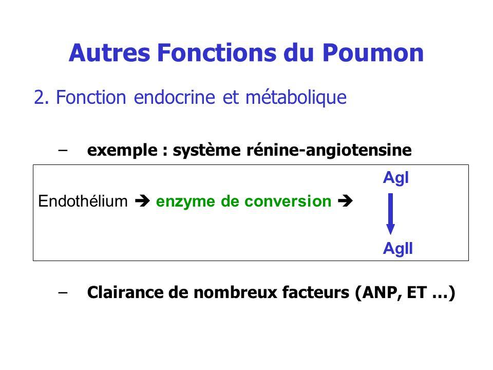 Autres Fonctions du Poumon 2. Fonction endocrine et métabolique –exemple : système rénine-angiotensine –Clairance de nombreux facteurs (ANP, ET …) AgI