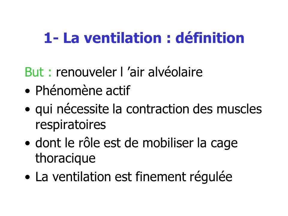 1- La ventilation : définition But : renouveler l air alvéolaire Phénomène actif qui nécessite la contraction des muscles respiratoires dont le rôle e