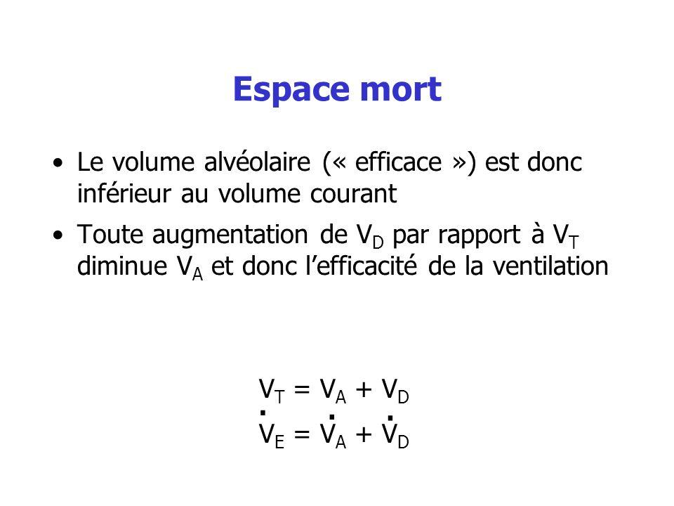 Espace mort Le volume alvéolaire (« efficace ») est donc inférieur au volume courant Toute augmentation de V D par rapport à V T diminue V A et donc l