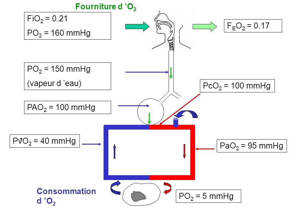 FiO 2 = 0.21 PO 2 = 160 mmHg PO 2 = 150 mmHg (vapeur d eau) PaO 2 = 95 mmHg PvO 2 = 40 mmHg PO 2 = 5 mmHg PcO 2 = 100 mmHg F E O 2 = 0.17 PAO 2 = 100