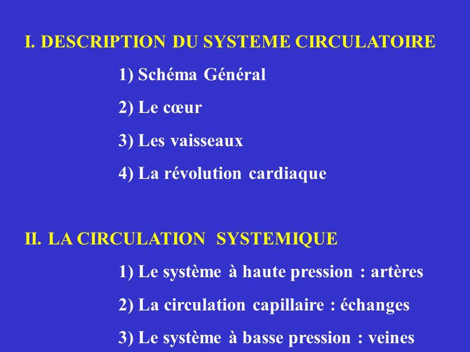 I. DESCRIPTION DU SYSTEME CIRCULATOIRE 1) Schéma Général 2) Le cœur 3) Les vaisseaux 4) La révolution cardiaque II. LA CIRCULATION SYSTEMIQUE 1) Le sy