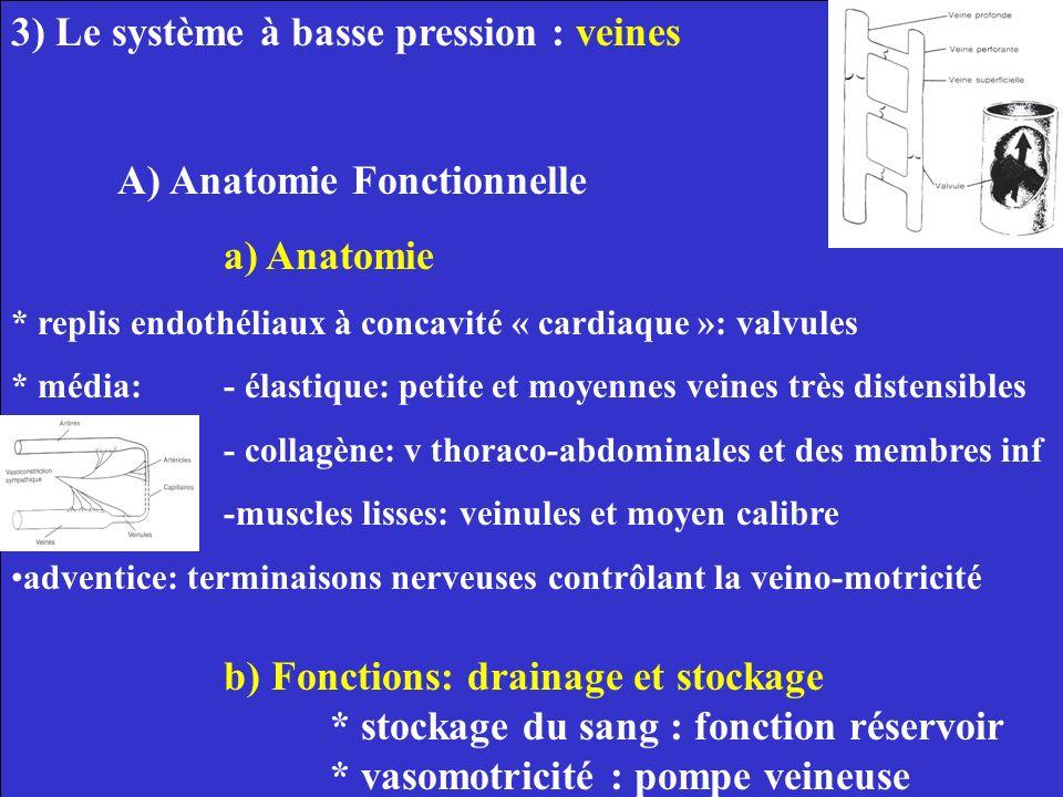 3) Le système à basse pression : veines A) Anatomie Fonctionnelle a) Anatomie * replis endothéliaux à concavité « cardiaque »: valvules * média: - éla