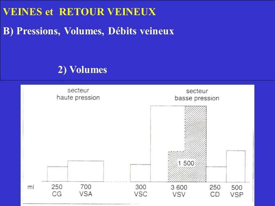 VEINES et RETOUR VEINEUX B) Pressions, Volumes, Débits veineux 2) Volumes