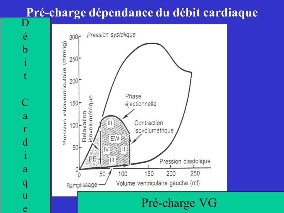Pré-charge dépendance du débit cardiaque DébitCardiaqueDébitCardiaque Pré-charge VG