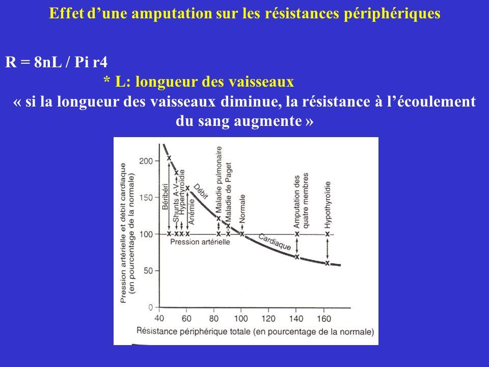 Effet dune amputation sur les résistances périphériques R = 8nL / Pi r4 * L: longueur des vaisseaux « si la longueur des vaisseaux diminue, la résista