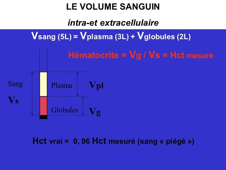 LE VOLUME SANGUIN intra-et extracellulaire Plasma Globules V pl VgVg Sang V s Hématocrite = V g / V s = Hct mesuré Hct vrai = 0, 96 Hct mesuré (sang «