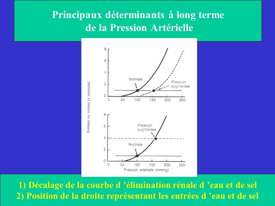Principaux déterminants à long terme de la Pression Artérielle 1) Décalage de la courbe d élimination rénale d eau et de sel 2) Position de la droite
