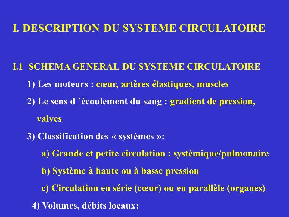 I. DESCRIPTION DU SYSTEME CIRCULATOIRE I.1 SCHEMA GENERAL DU SYSTEME CIRCULATOIRE 1) Les moteurs : cœur, artères élastiques, muscles 2) Le sens d écou
