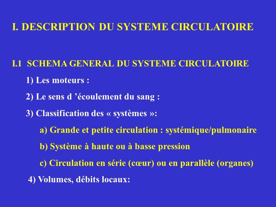I. DESCRIPTION DU SYSTEME CIRCULATOIRE I.1 SCHEMA GENERAL DU SYSTEME CIRCULATOIRE 1) Les moteurs : 2) Le sens d écoulement du sang : 3) Classification