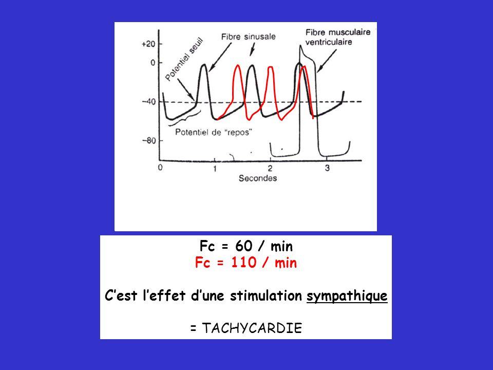 Fc = 60 / min Fc = 110 / min Cest leffet dune stimulation sympathique = TACHYCARDIE