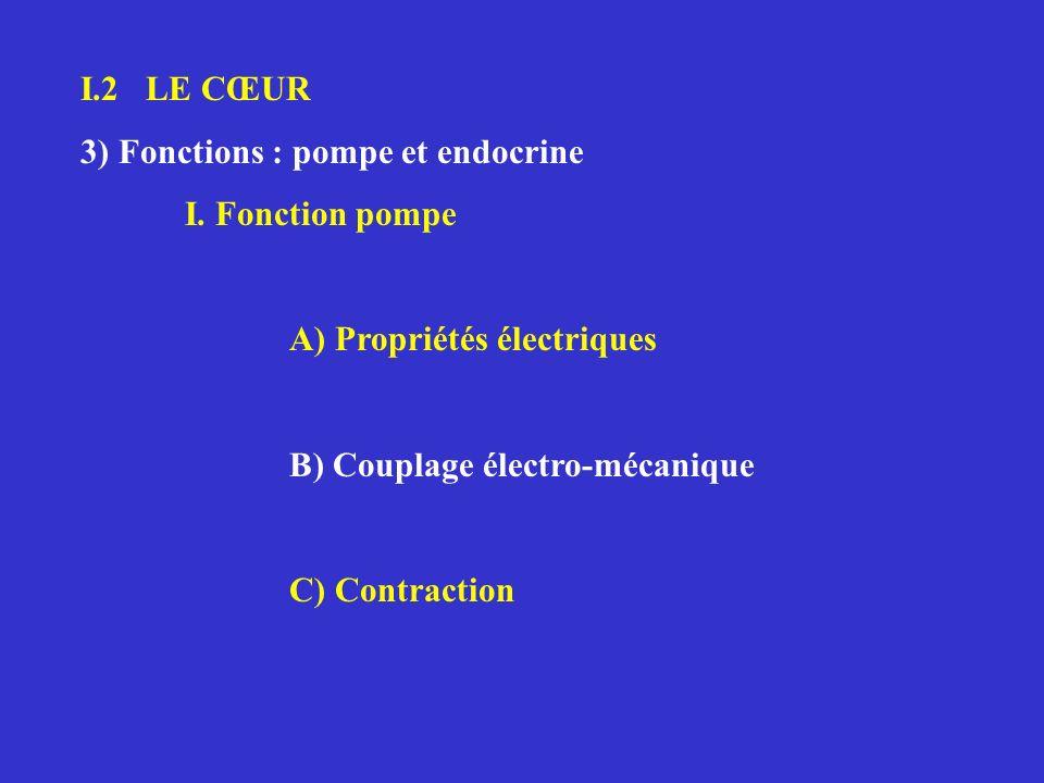 I.2 LE CŒUR 3) Fonctions : pompe et endocrine I. Fonction pompe A) Propriétés électriques B) Couplage électro-mécanique C) Contraction