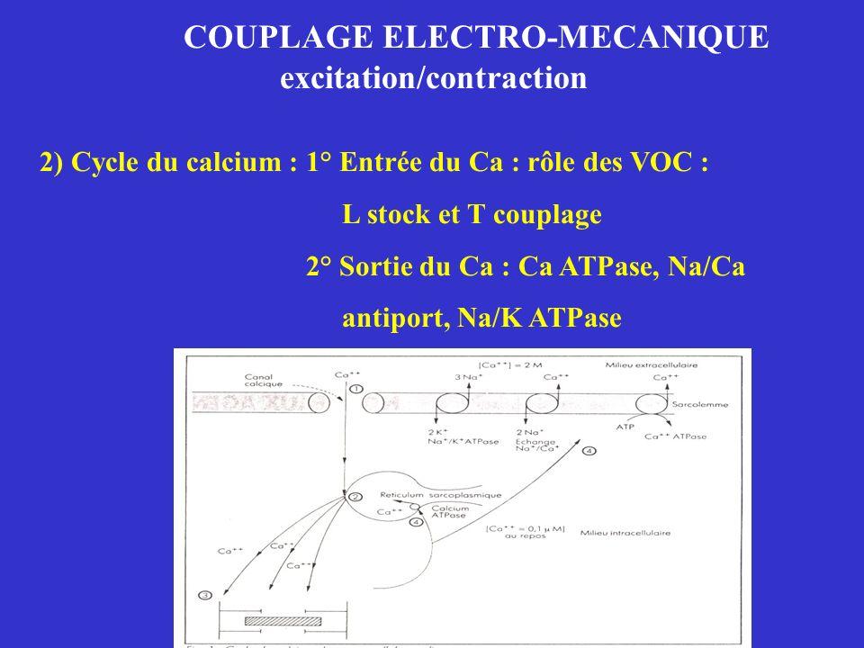 COUPLAGE ELECTRO-MECANIQUE excitation/contraction 2) Cycle du calcium : 1° Entrée du Ca : rôle des VOC : L stock et T couplage 2° Sortie du Ca : Ca AT
