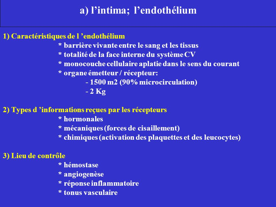 a) lintima; lendothélium 1) Caractéristiques de l endothélium * barrière vivante entre le sang et les tissus * totalité de la face interne du système