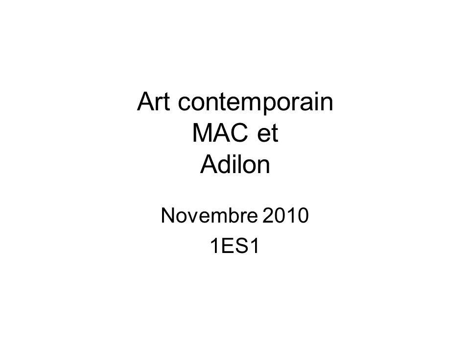 Art contemporain MAC et Adilon Novembre 2010 1ES1