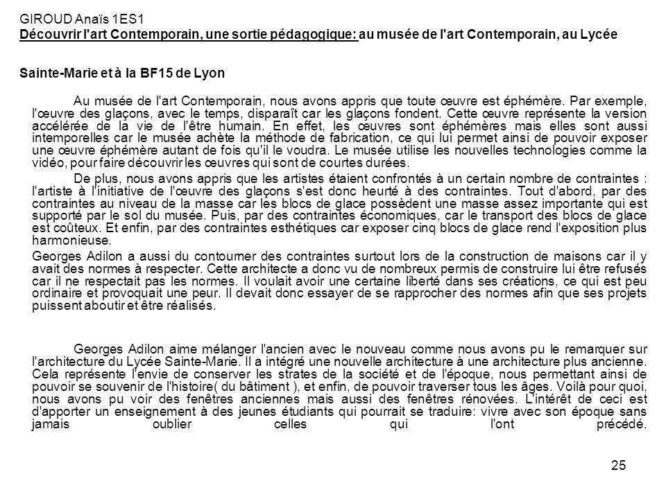 25 GIROUD Anaïs 1ES1 Découvrir l'art Contemporain, une sortie pédagogique: au musée de l'art Contemporain, au Lycée Sainte-Marie et à la BF15 de Lyon