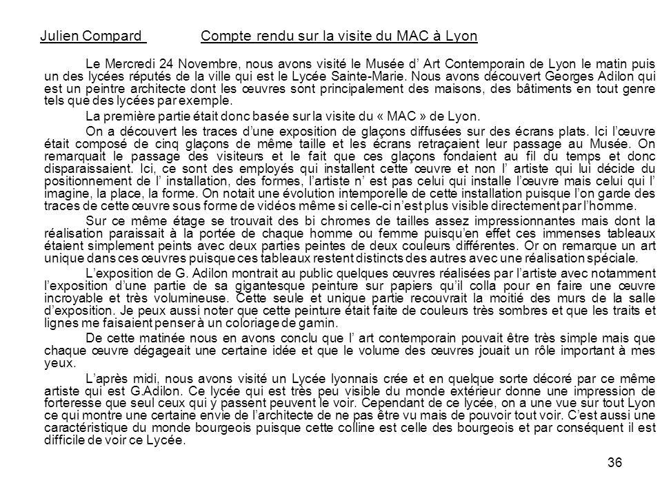 36 Julien Compard Compte rendu sur la visite du MAC à Lyon Le Mercredi 24 Novembre, nous avons visité le Musée d Art Contemporain de Lyon le matin pui