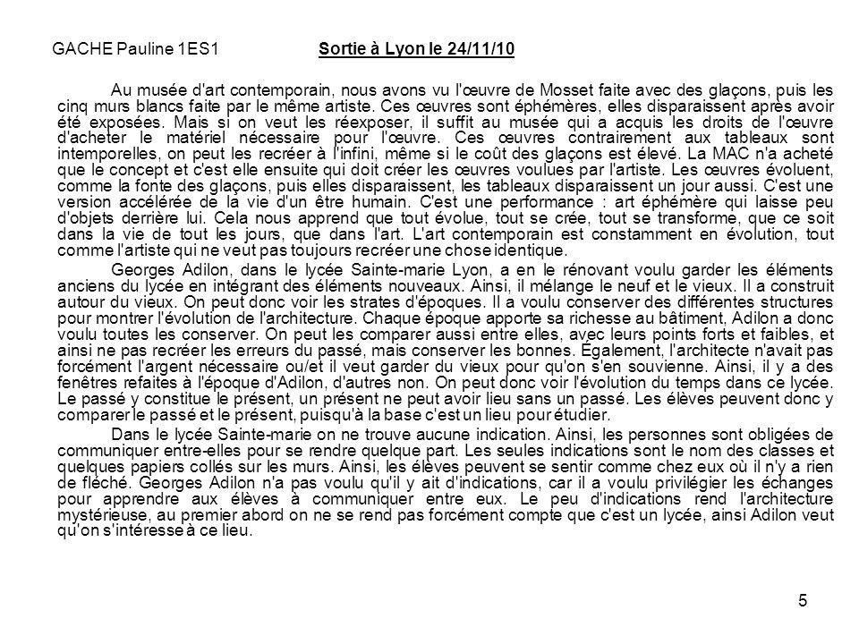 5 GACHE Pauline 1ES1 Sortie à Lyon le 24/11/10 Au musée d'art contemporain, nous avons vu l'œuvre de Mosset faite avec des glaçons, puis les cinq murs