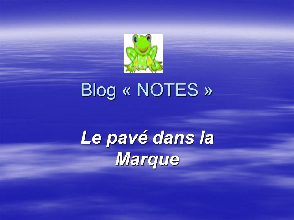 Blog « NOTES » Le pavé dans la Marque