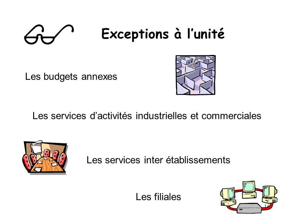 16 Exceptions à lunité Les budgets annexes Les services dactivités industrielles et commerciales Les services inter établissements Les filiales