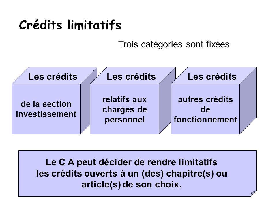 22 Crédits limitatifs Trois catégories sont fixées Les crédits de la section investissement Les crédits relatifs aux charges de personnel Les crédits