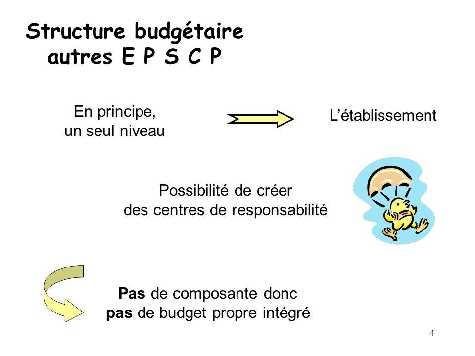 4 Structure budgétaire autres E P S C P En principe, un seul niveau Létablissement Possibilité de créer des centres de responsabilité Pas de composant