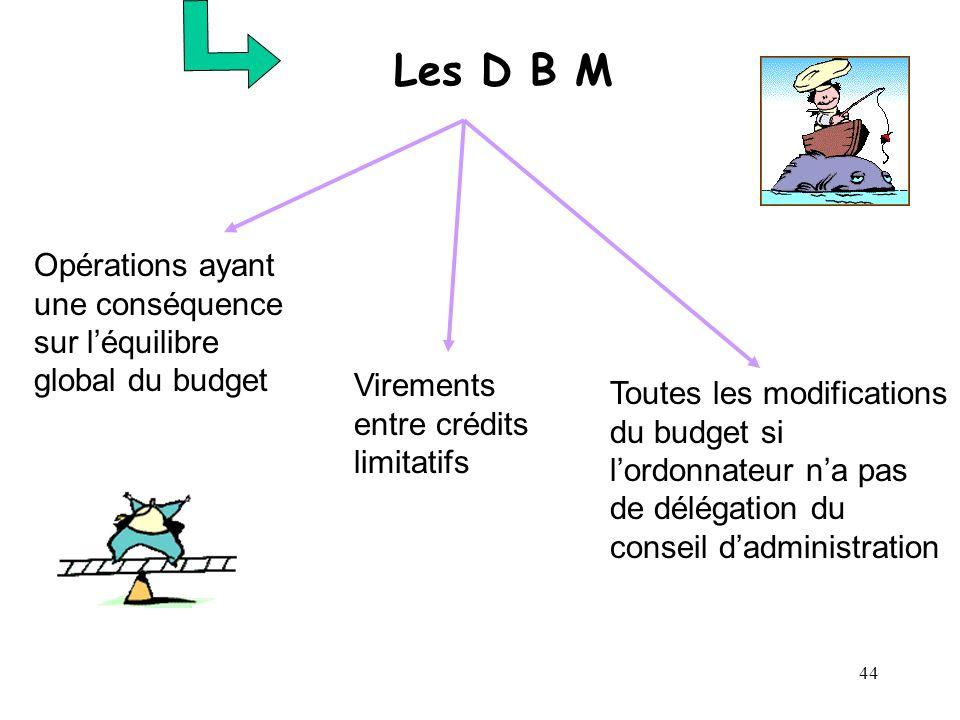 44 Les D B M Opérations ayant une conséquence sur léquilibre global du budget Virements entre crédits limitatifs Toutes les modifications du budget si