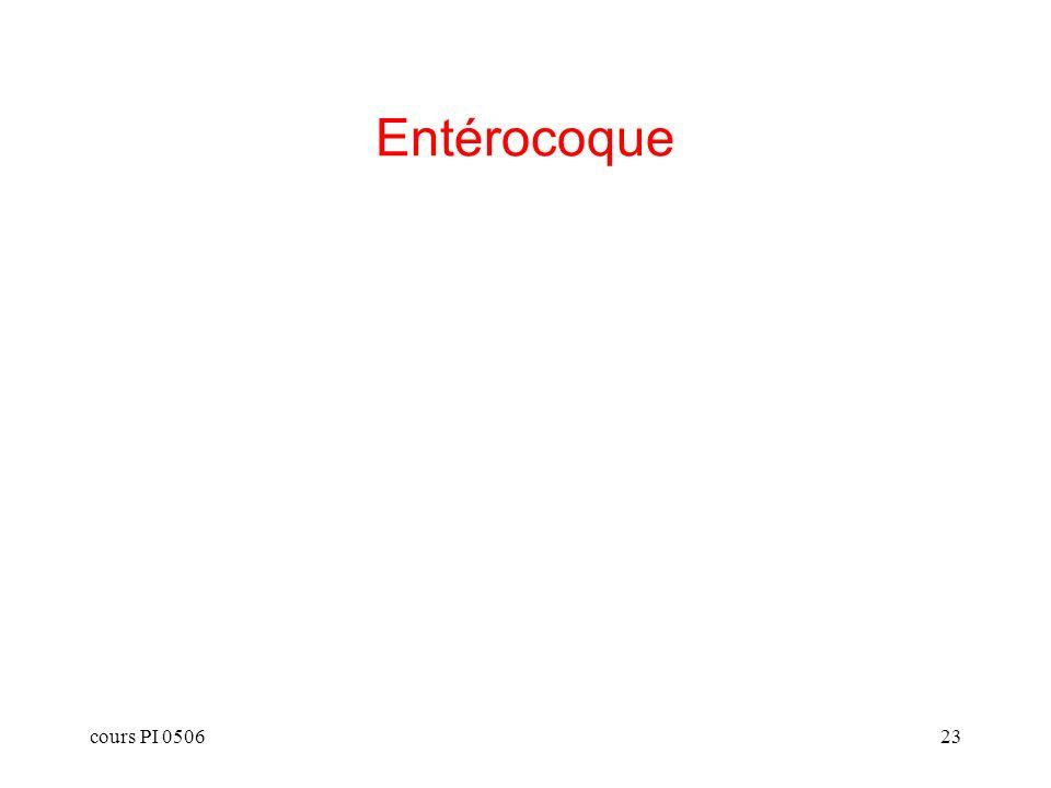 cours PI 050623 Entérocoque