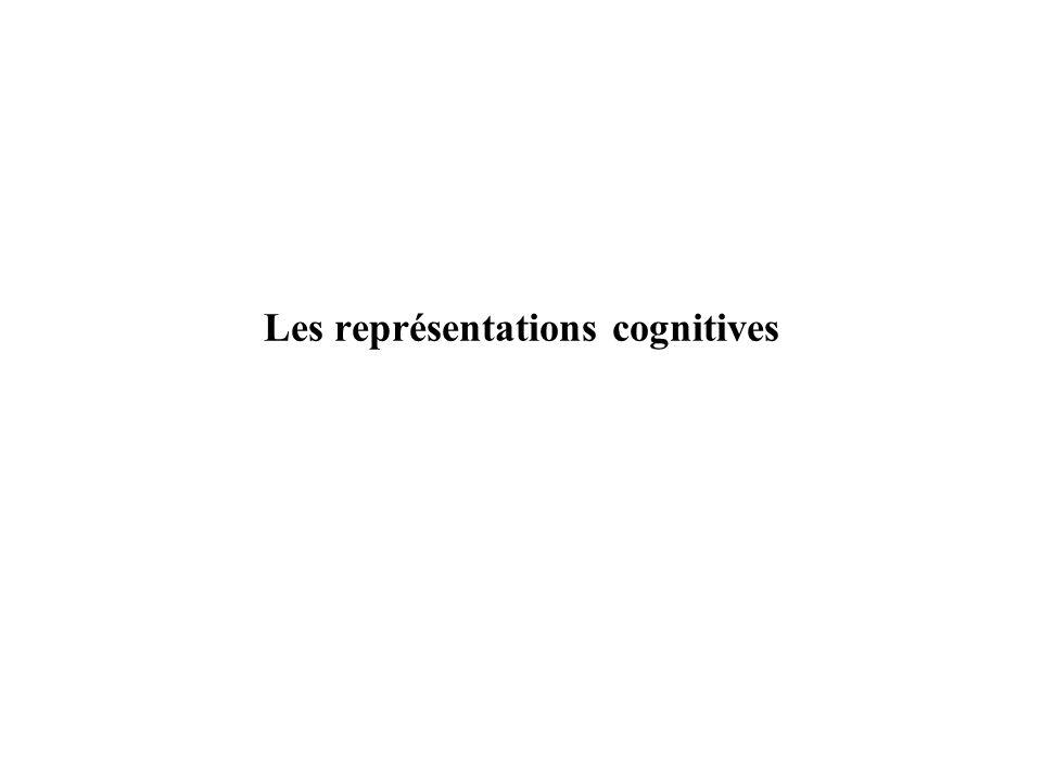 Les représentations cognitives