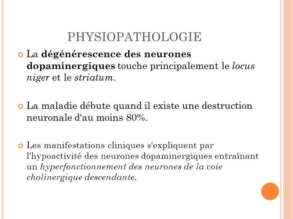 PHYSIOPATHOLOGIE La dégénérescence des neurones dopaminergiques touche principalement le locus niger et le striatum. La maladie débute quand il existe