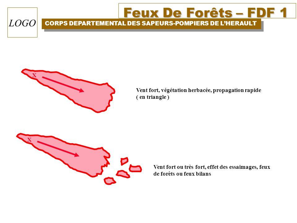 Feux De Forêts – FDF 1 CORPS DEPARTEMENTAL DES SAPEURS-POMPIERS DE LHERAULT LOGO X Vent fort, végétation herbacée, propagation rapide ( en triangle )