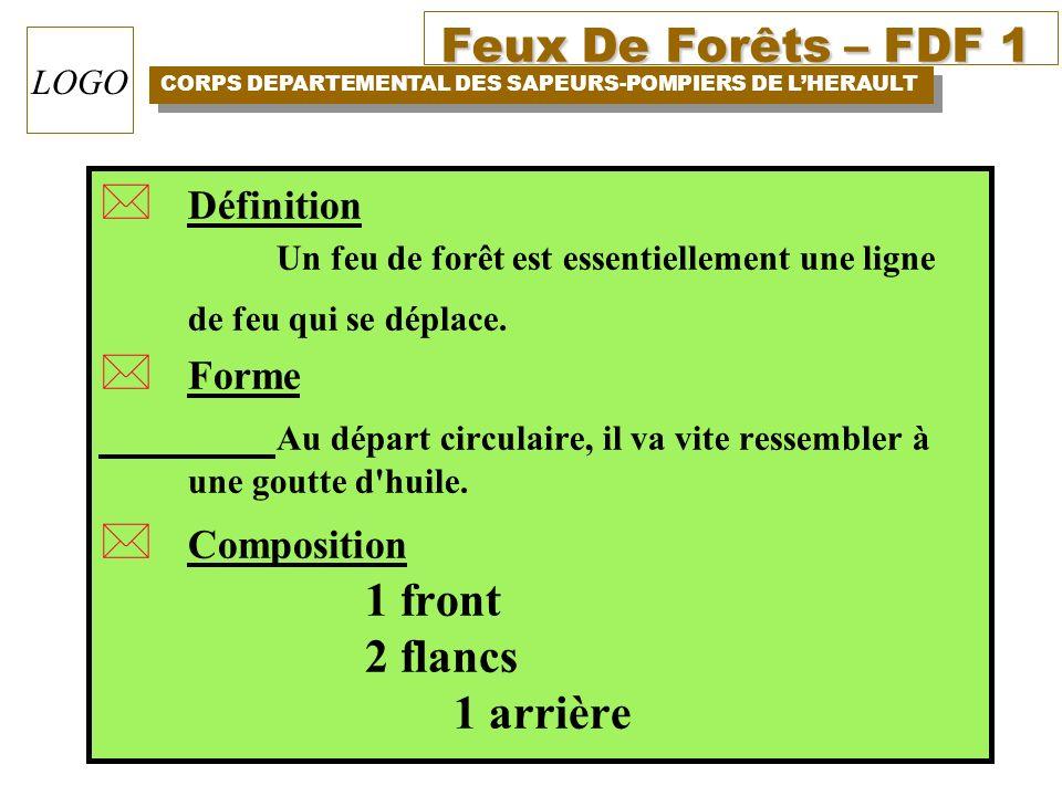 Feux De Forêts – FDF 1 CORPS DEPARTEMENTAL DES SAPEURS-POMPIERS DE LHERAULT LOGO * Définition Un feu de forêt est essentiellement une ligne de feu qui