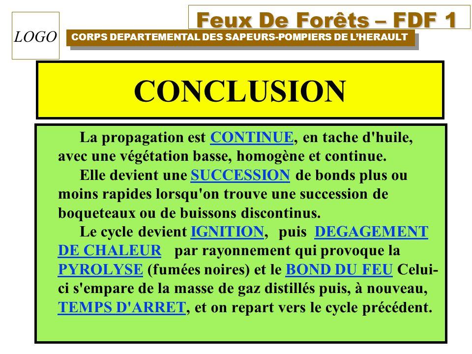 Feux De Forêts – FDF 1 CORPS DEPARTEMENTAL DES SAPEURS-POMPIERS DE LHERAULT LOGO CONCLUSION La propagation est CONTINUE, en tache d'huile, avec une vé