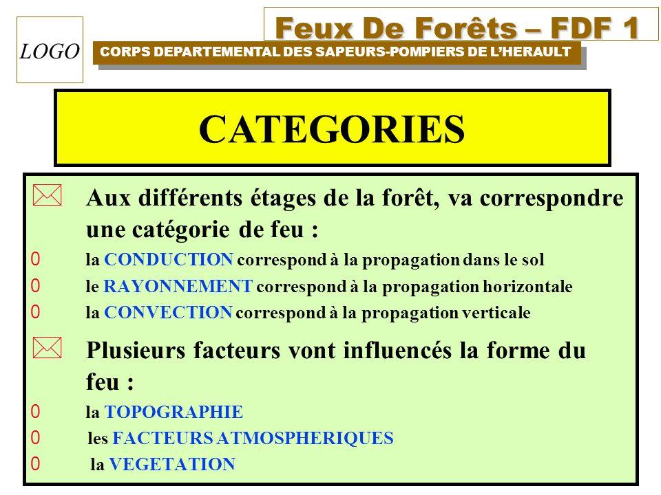 Feux De Forêts – FDF 1 CORPS DEPARTEMENTAL DES SAPEURS-POMPIERS DE LHERAULT LOGO * Aux différents étages de la forêt, va correspondre une catégorie de