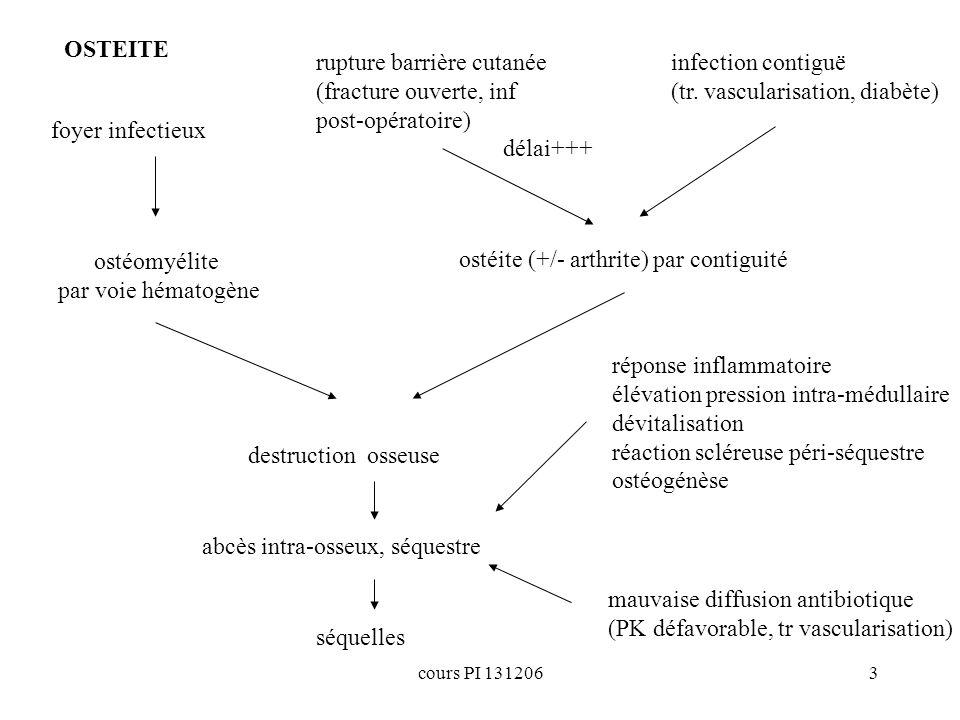 cours PI 1312063 foyer infectieux ostéite (+/- arthrite) par contiguité rupture barrière cutanée (fracture ouverte, inf post-opératoire) destruction o