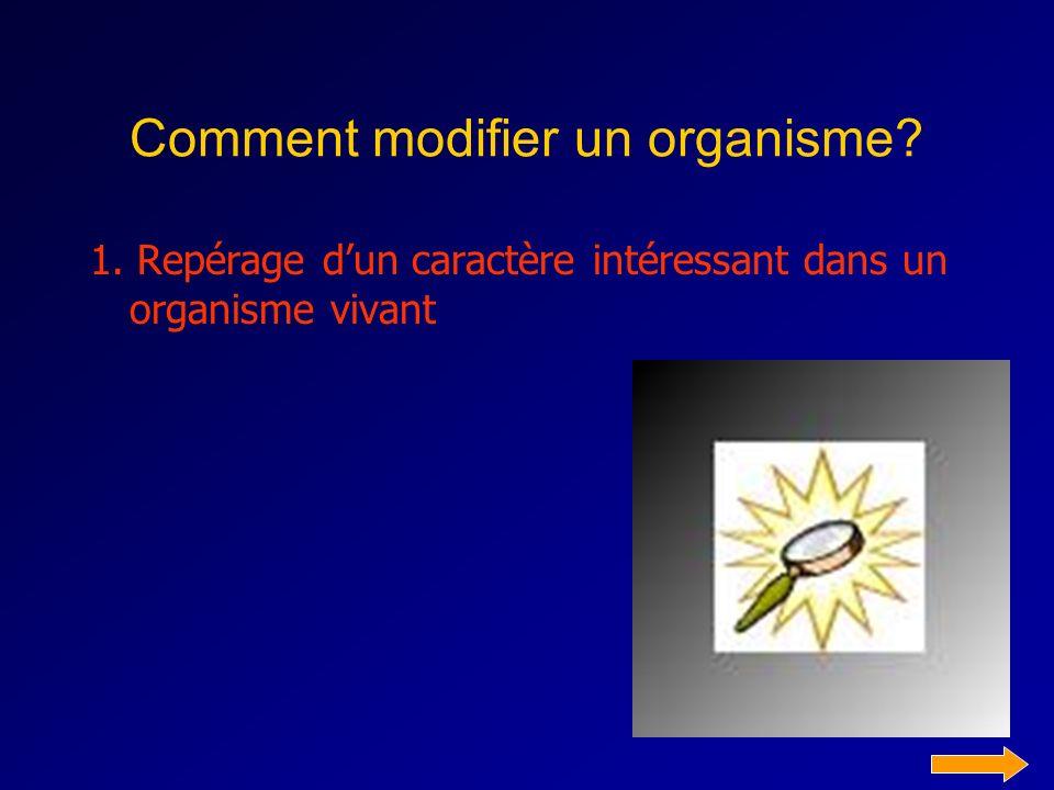 Comment modifier un organisme? 1. Repérage dun caractère intéressant dans un organisme vivant