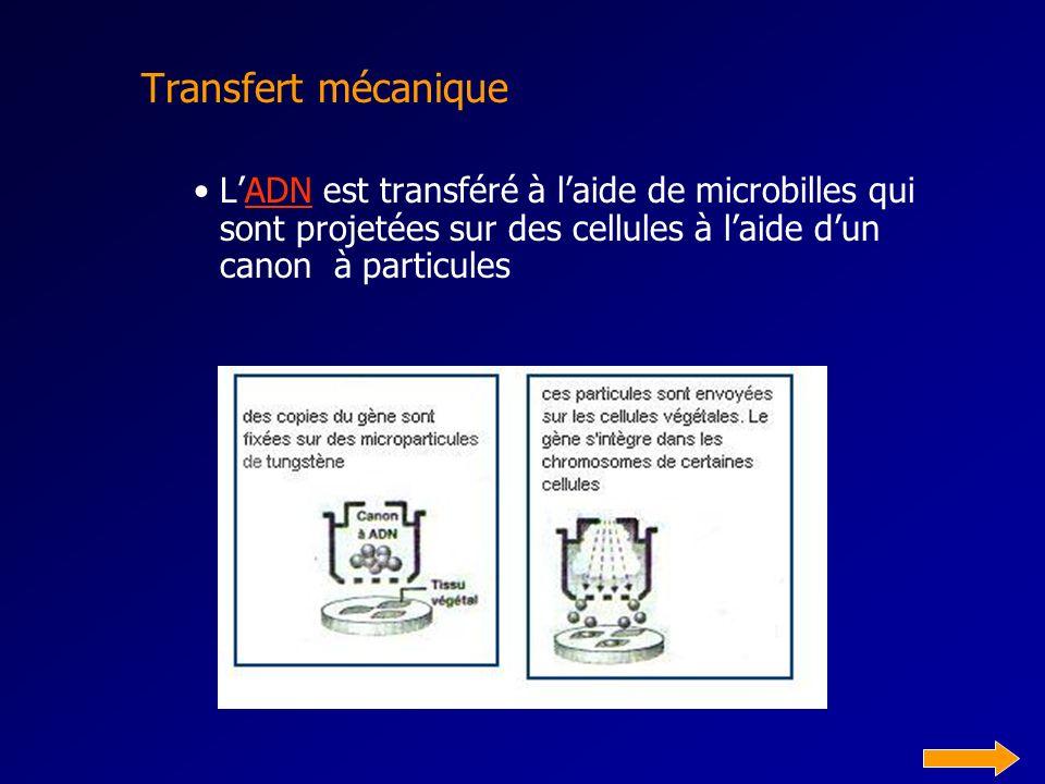 Transfert mécanique LADN est transféré à laide de microbilles qui sont projetées sur des cellules à laide dun canon à particulesADN